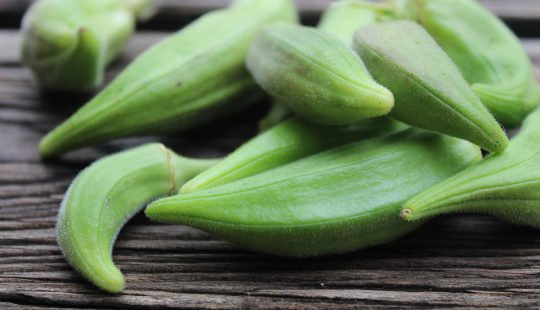 okra is brain food for physicists